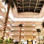 お茶に紙おしぼりを添えたホテルのウェルカムサービスはお客様の心をつかみます。